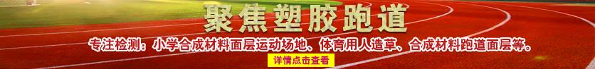 张雯斯坦德大站图片836x98-20181119-2.png